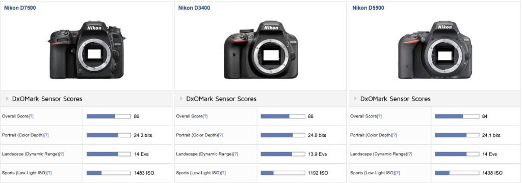 Nikon-D7500-vs-D3400-vs-D5500