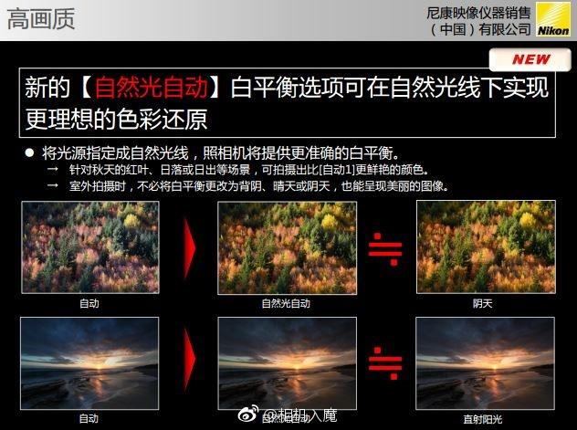 Nikon-D850-slides-13