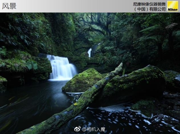 Nikon-D850-slides-3
