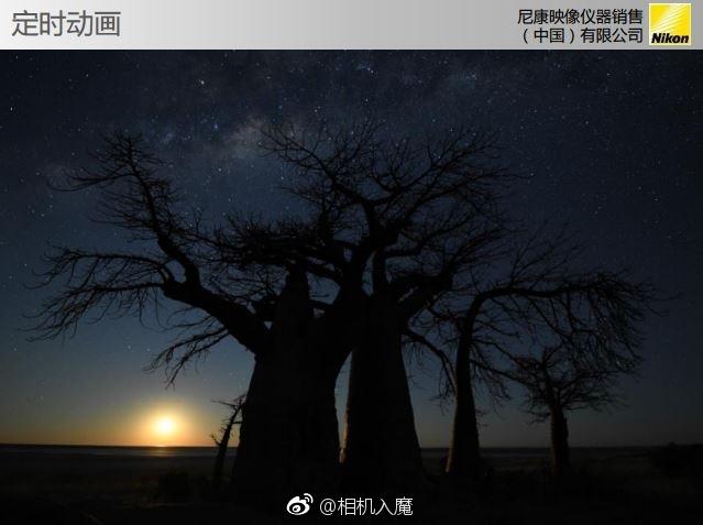 Nikon-D850-slides-6